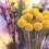 Inauguration d'une nouvelle boutique de fleuriste :  Fleurs de Mars