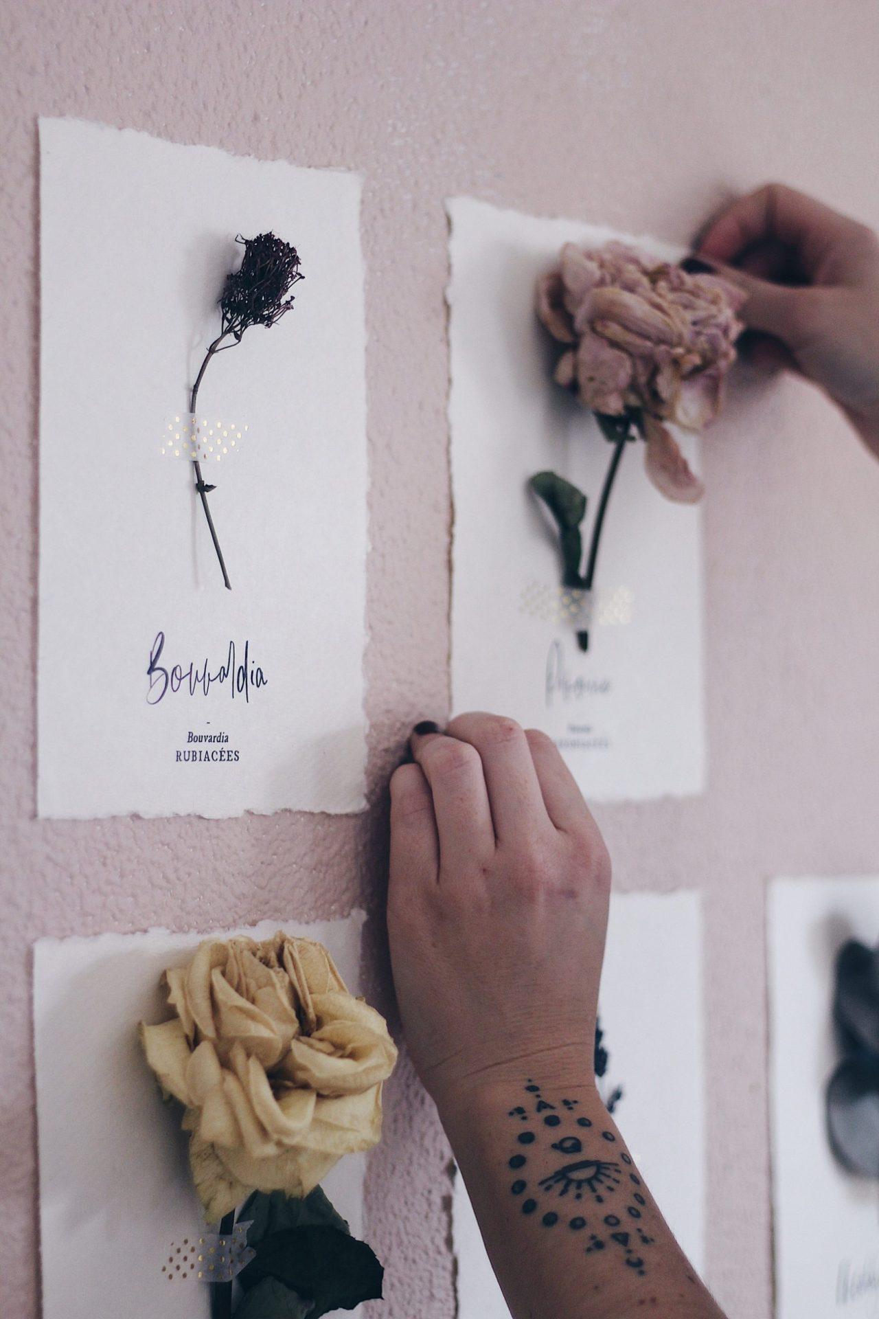 Flowever fleurs séchées