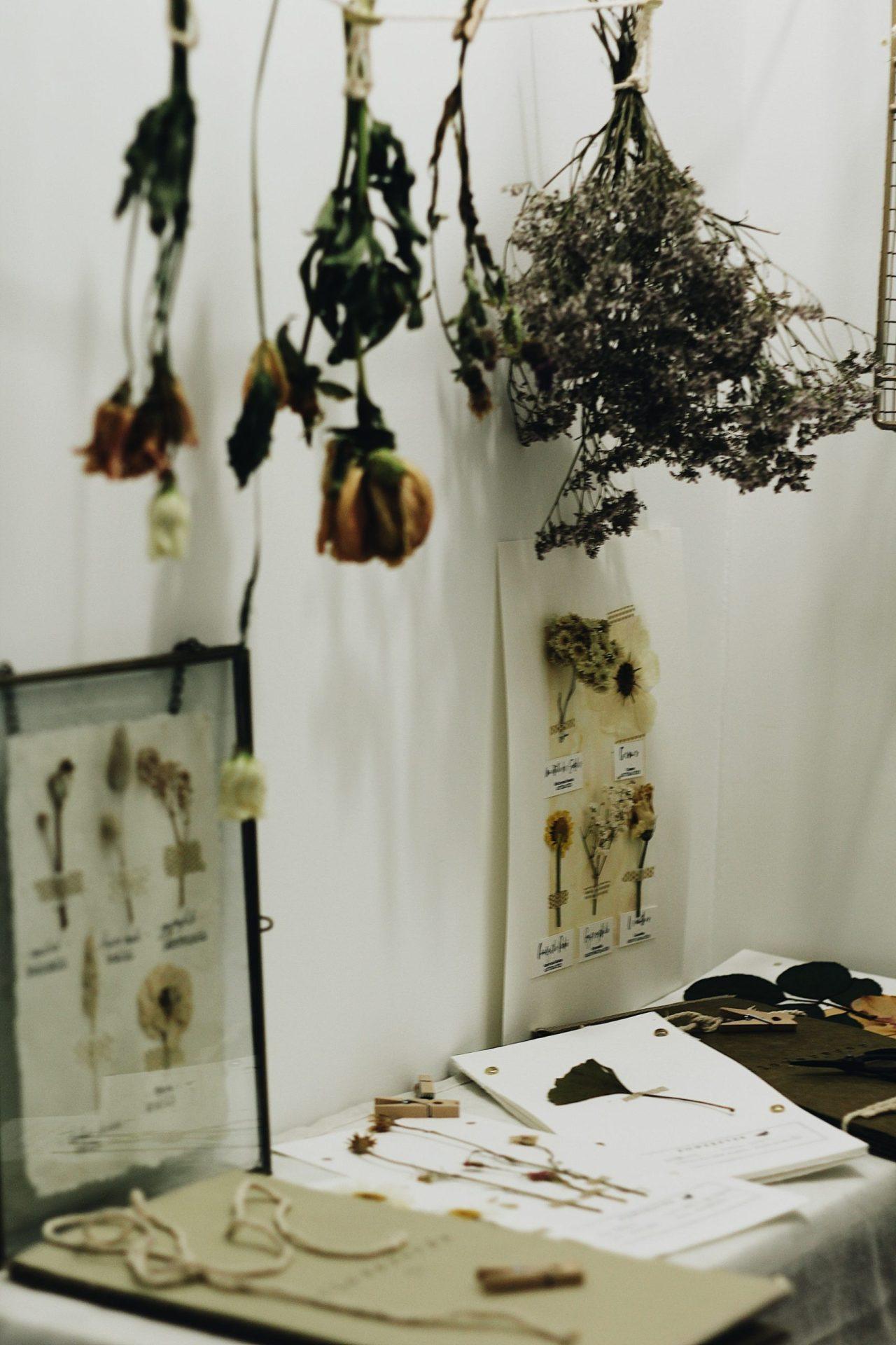 Fleurs séchées artisan créateur
