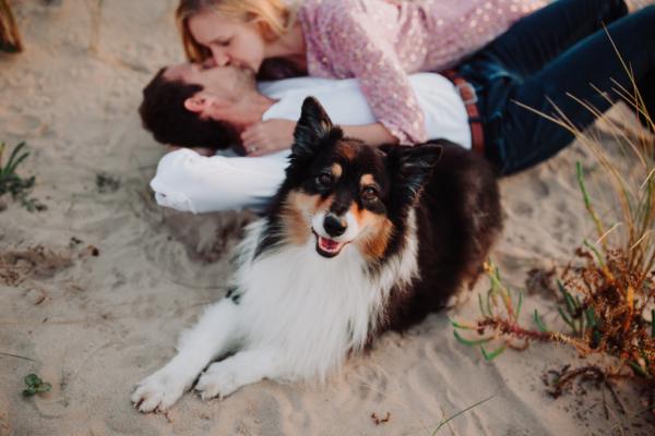 Couple s'embrassant avec leur chien